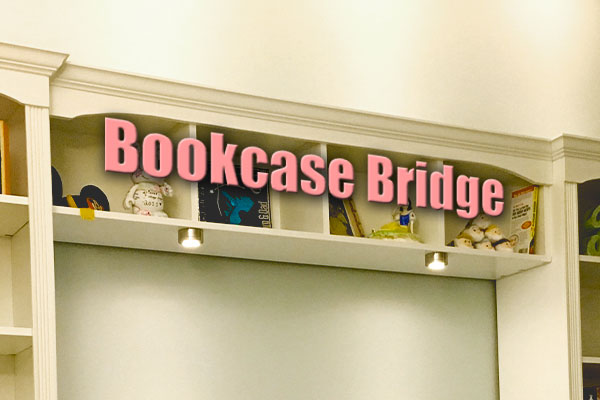 Bookcase Bridge