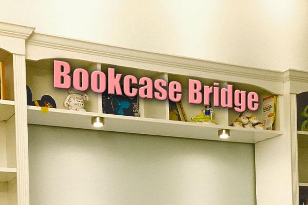 Bookcase Bridge Handydadtv